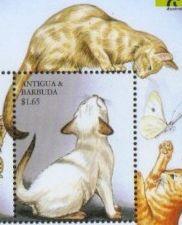 Antiguabar1999ssf_100dpi