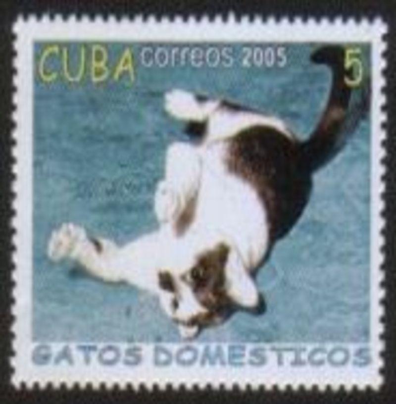 Cuba200503a_100dpi