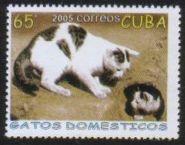 Cuba200503d_100dpi_2